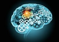 mind gears brain