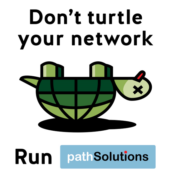 Don't Turtle Your Network—Stay on Your Feet with Total Network Visibility