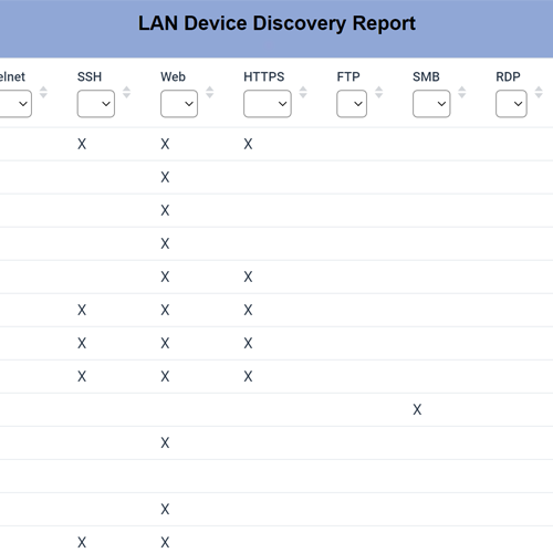 RemoteView LAN Device Discovery Report